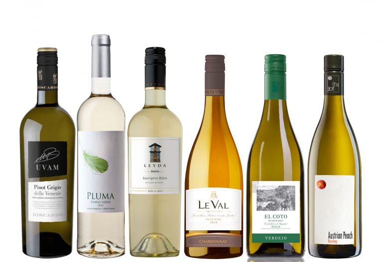 Suvine veinikast