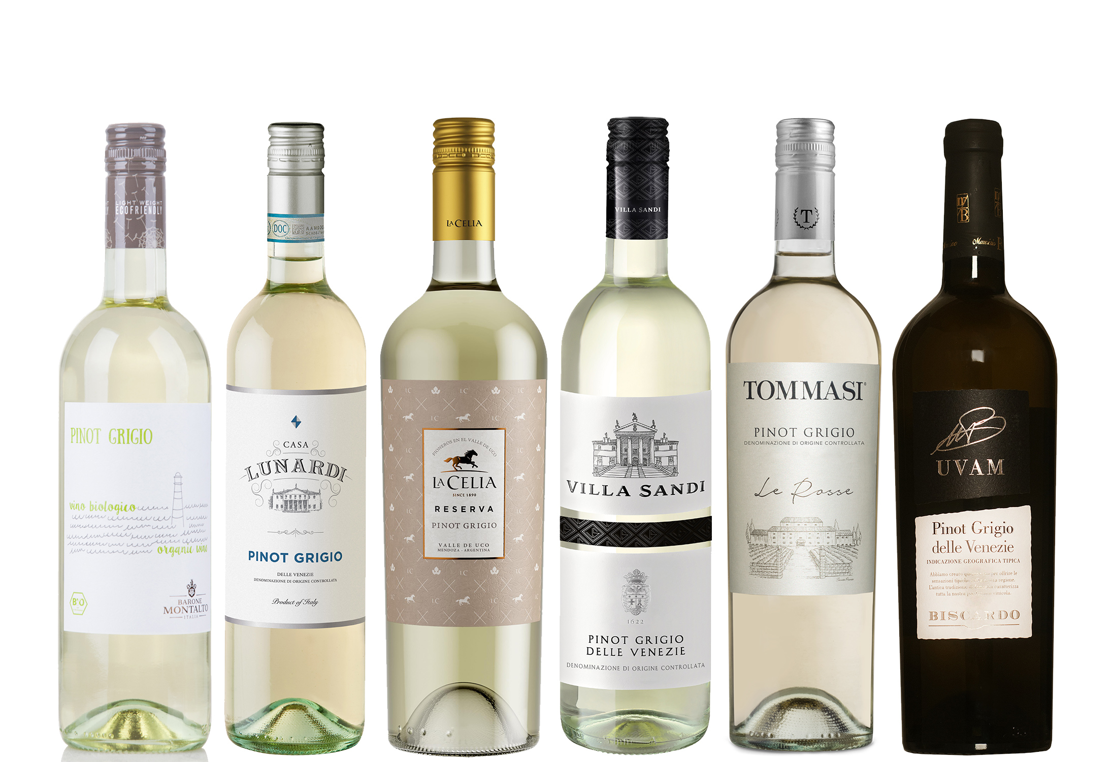 Pinot Grigio veinid